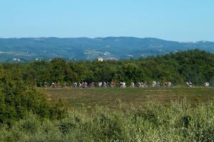 servizi-noleggio-bici